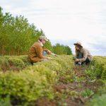 7種綠色工作無化石燃料未來的關鍵